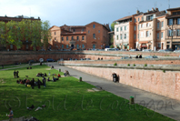photo de la place de la Daurade, Toulouse
